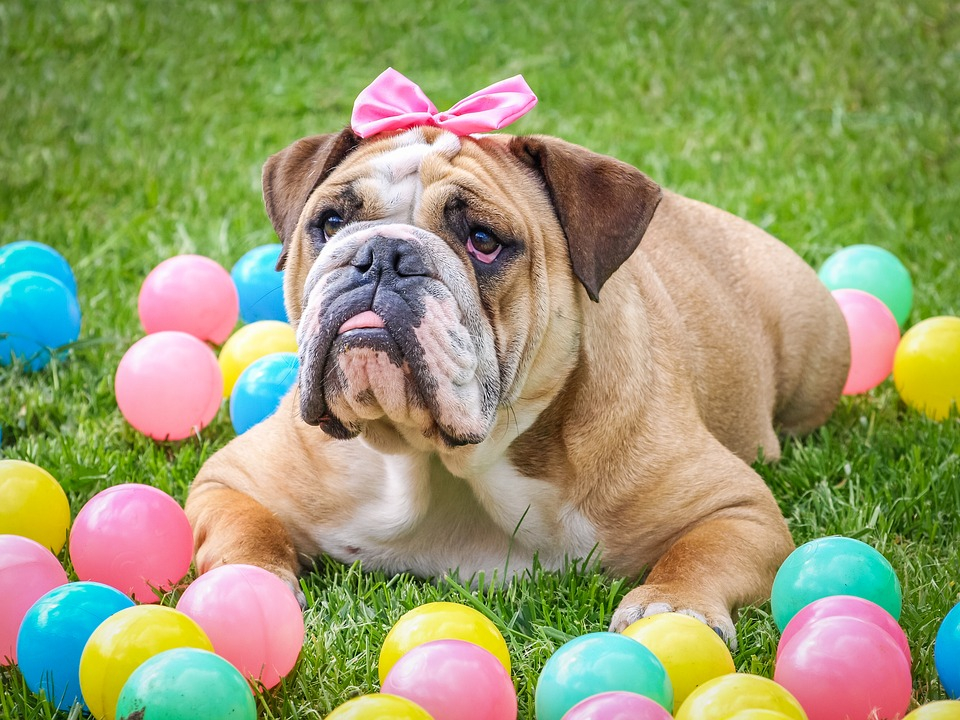 How to Have Simple, Fun, and Low Budget Easter for Your Family